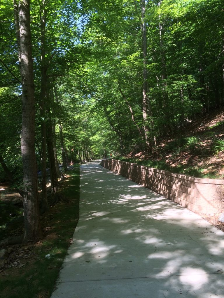 Bolin Creek Trail Extension Summer 2016 -  picture 2